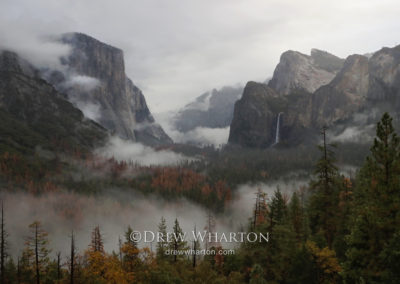 Early morning fog, Yosemite Valley